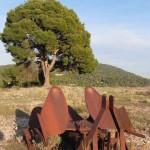 Ayna-Sierra-del-Segura-Albacete-13