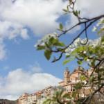 Ayna-Sierra-del-Segura-Albacete-14