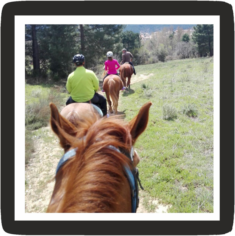 Montar a caballo en Ayna y Riopar