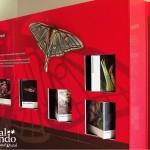 Qué visitar en Yeste - Centro de Interpretación del Parque Natural de Los Calares y La Sima.