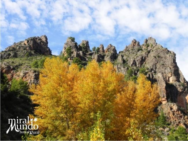 Otoño en la Sierra del Segura paisaje ayna