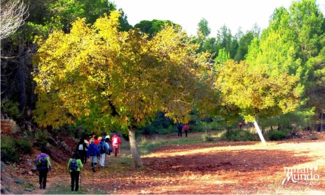 Otoño en la Sierra del Segura senderismo en ayna