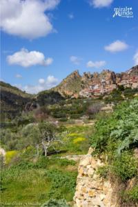 Visita guiada para conocer la Flora y Fauna de Aýna