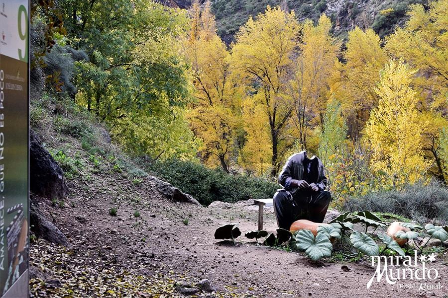 Aýna-ruta-de-Amanecista-oda-calabaza-Sierra-del-Segura-Albacete-Miralmundo