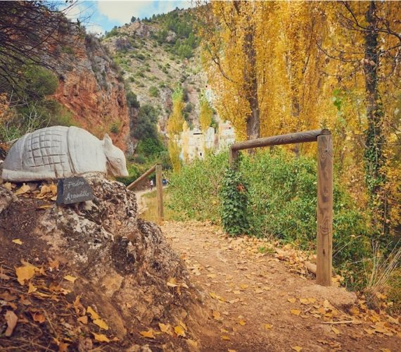 Qué visitar y qué hacer en Bogarra