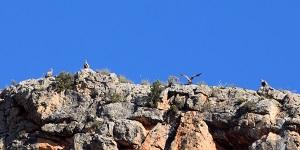Miralmundo-Que-Hacer-Actividades-ACTIOBILING